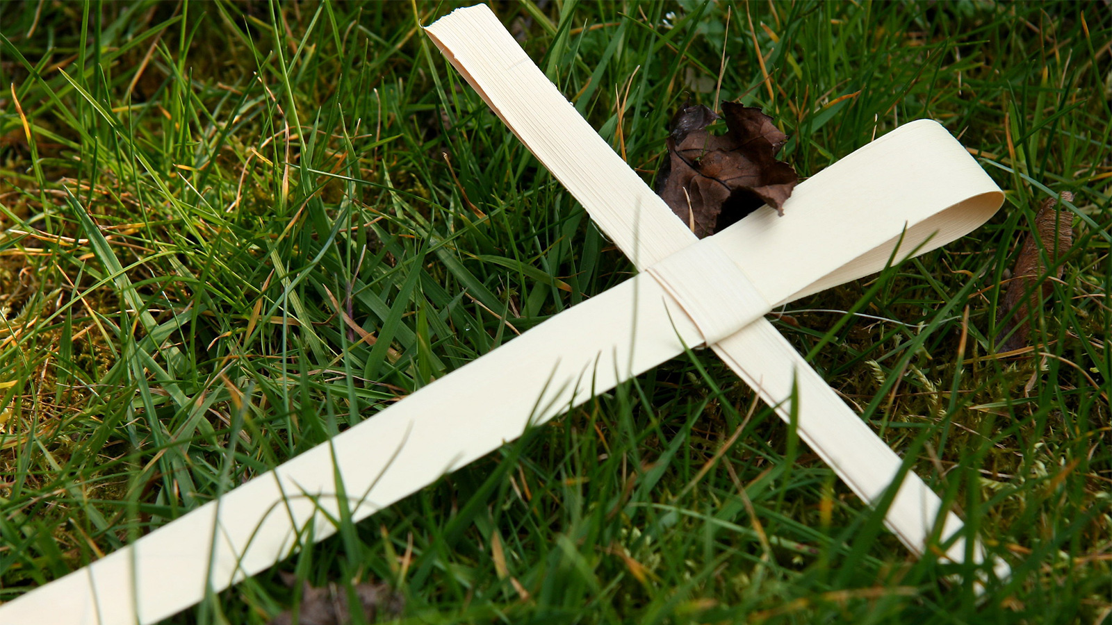 A palm leaf woven into a cross, lying on some grass.